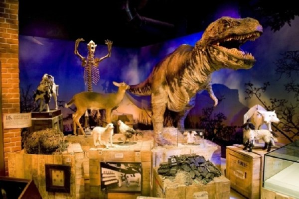 Win a Family Ticket to Ripley's Believe It or Not! London