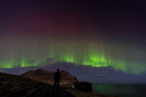 Faroese Food, Festivals And A Natural Phenomenon