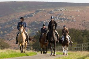 Explore the Beauty of Dartmoor with Liberty Trails Bespoke Experience Holidays