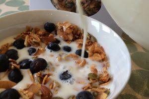 Grain-free Granola from the Paleo Food Company