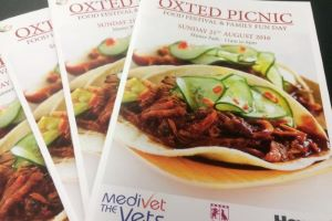 The Oxted Picnic Returns to Master Park for 2016