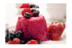Summer Fruit Pudding at The Country Living Spring Fair